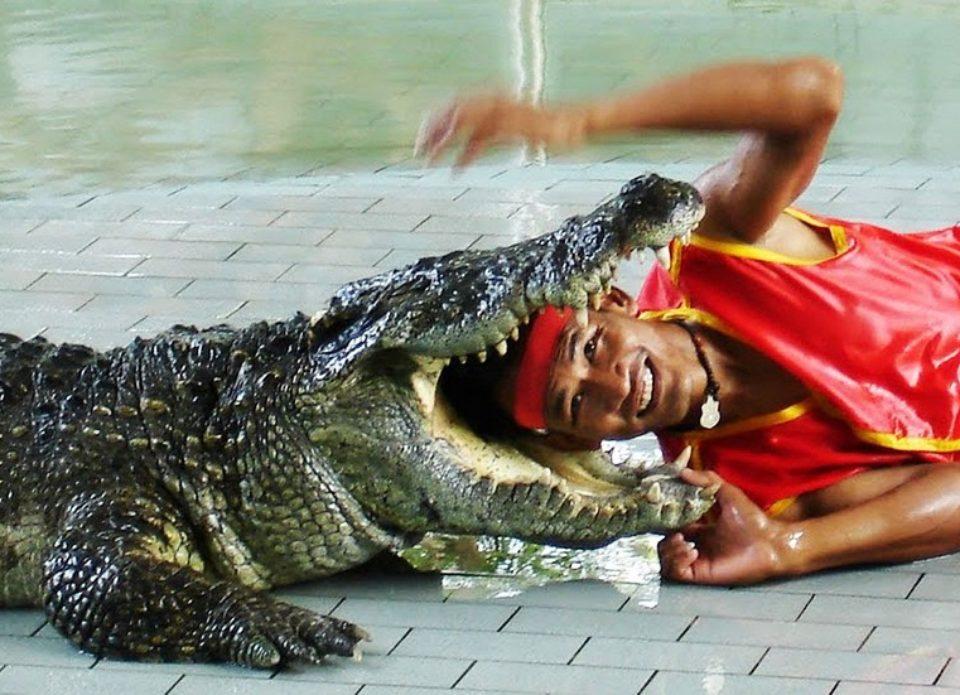К началу зимнего сезона в Таиланде введут туристический сбор