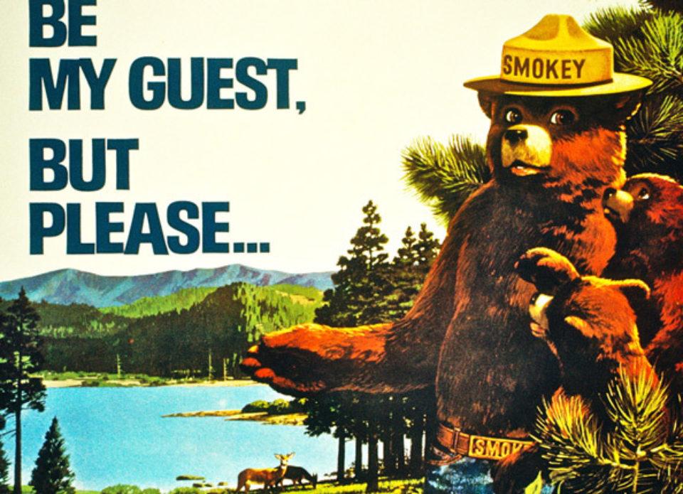 В Беларусь едет медвежонок Smokey в сопровождении американских рейнджеров