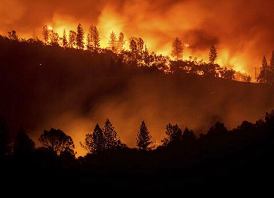 Масштабные пожары в Австралии видны из космоса