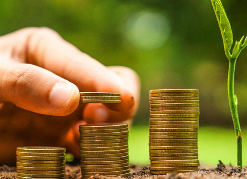 Финансовая устойчивость и безопасность в туристической деятельности