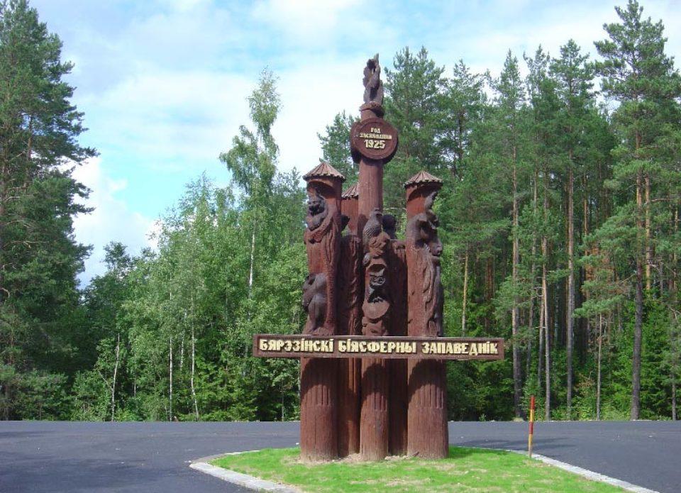 «Тайм Вояж» предлагает семейные туры и туры для взрослых в Березинский заповедник