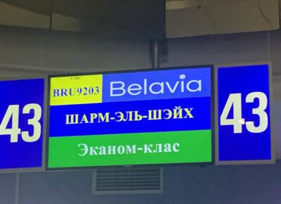 Состоялся первый чартерный рейс из Беларуси в Египет