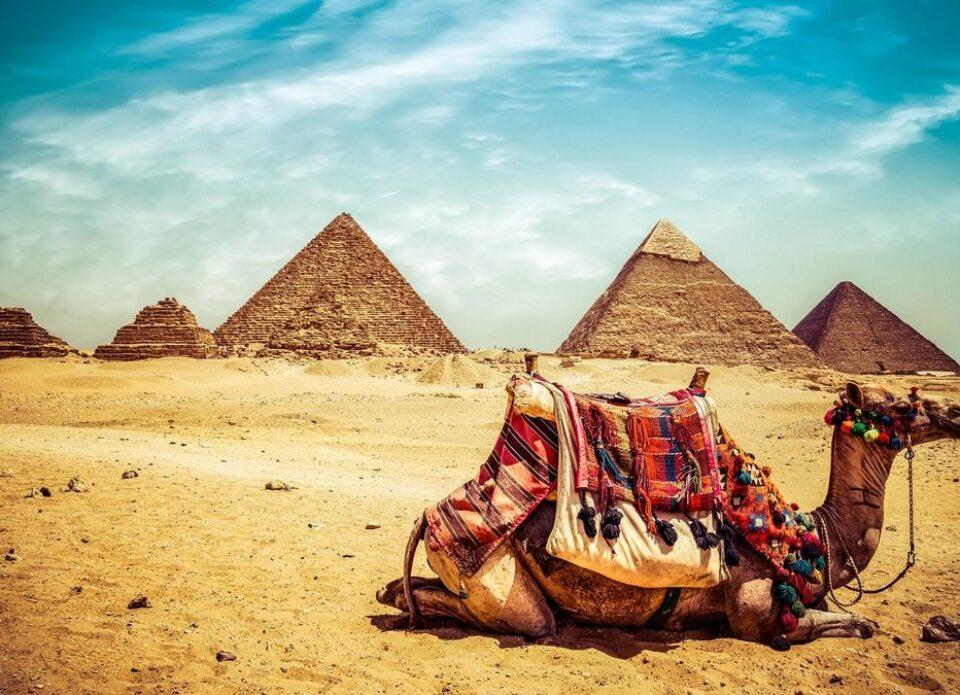 С 1 сентября для въезда в Египет понадобится ПЦР-тест