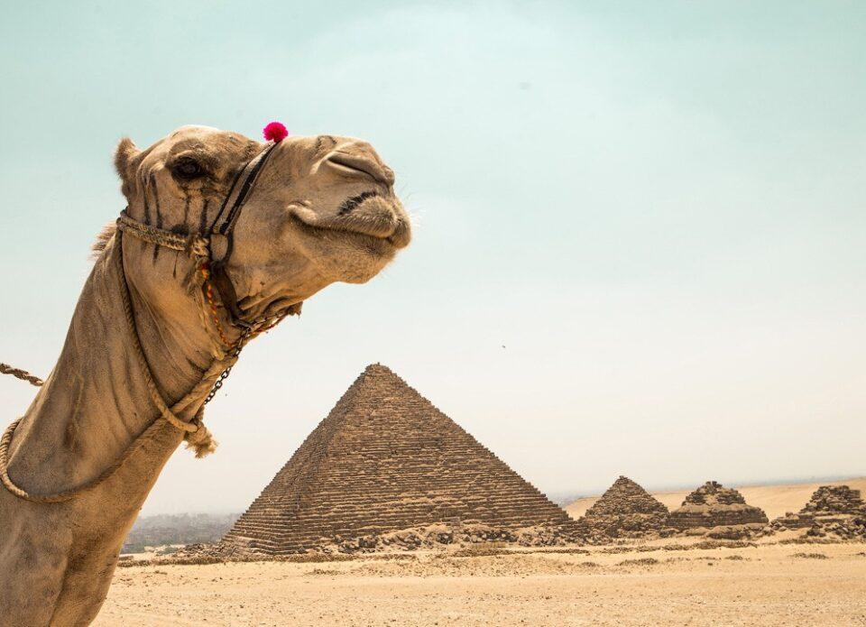 Виза для въезда в Египет будет бесплатной до 30 апреля 2021 года