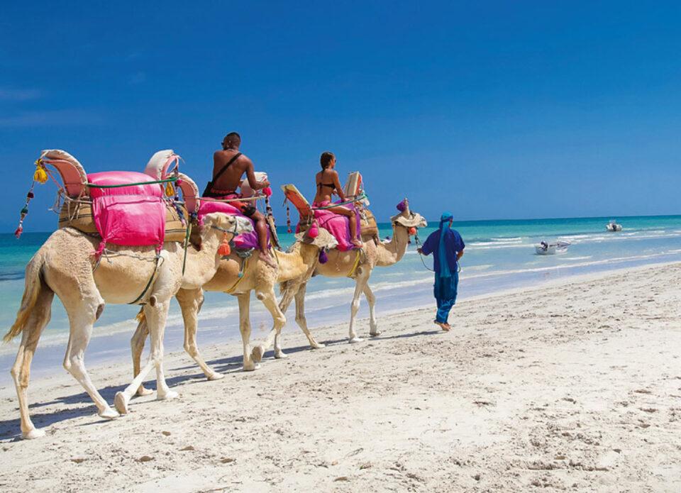 «ИНТЕРСИТИ» предлагает супер цены на отдых на острове Джерба!