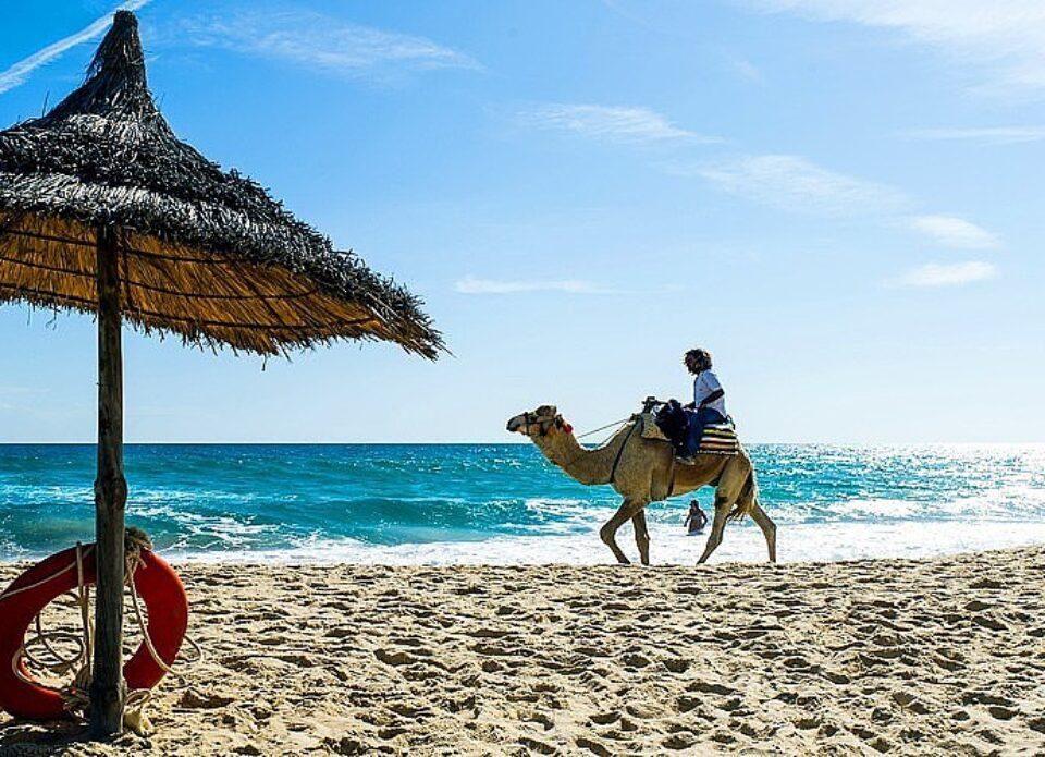 Все белорусские туристы эвакуированы из Туниса